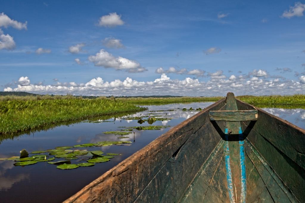 Kanotocht Mabamba Swamp